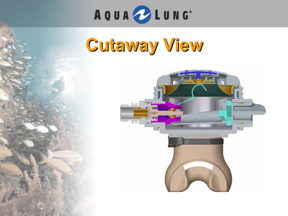 Cutaway View