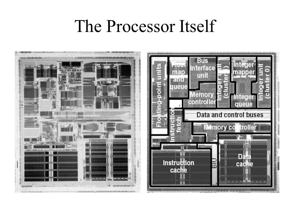 The Processor Itself