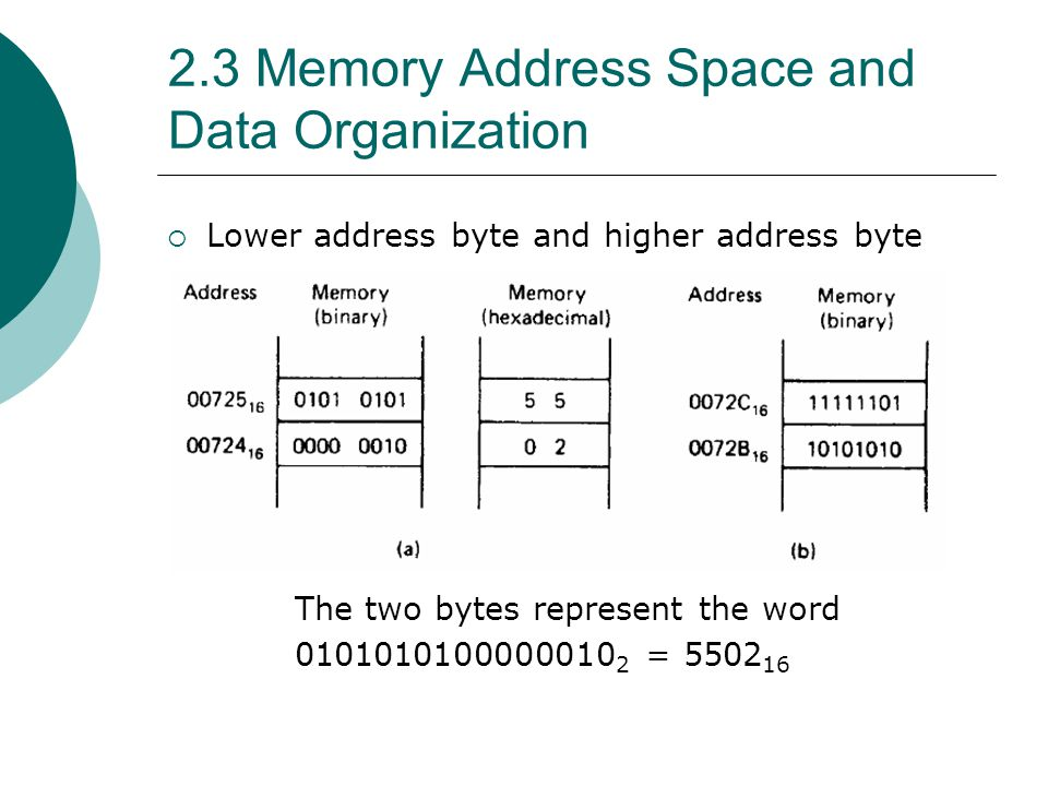 2.3 Memory Address Space and Data Organization  Lower address byte and higher address byte The two bytes represent the word 0101010100000010 2 = 5502