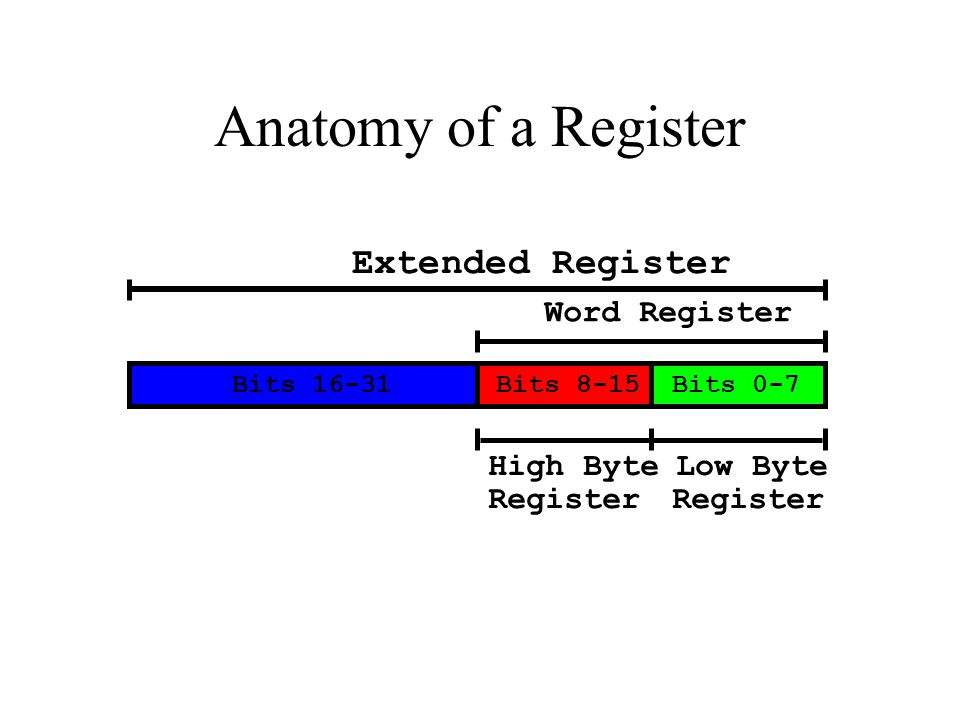 Bits 16-31Bits 8-15Bits 0-7 Extended Register Word Register High Byte Register Low Byte Register Anatomy of a Register