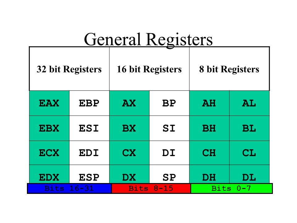 32 bit Registers16 bit Registers8 bit Registers EAXEBPAXBPAHAL EBXESIBXSIBHBL ECXEDICXDICHCL EDXESPDXSPDHDL Bits 16-31Bits 8-15Bits 0-7 General Regist