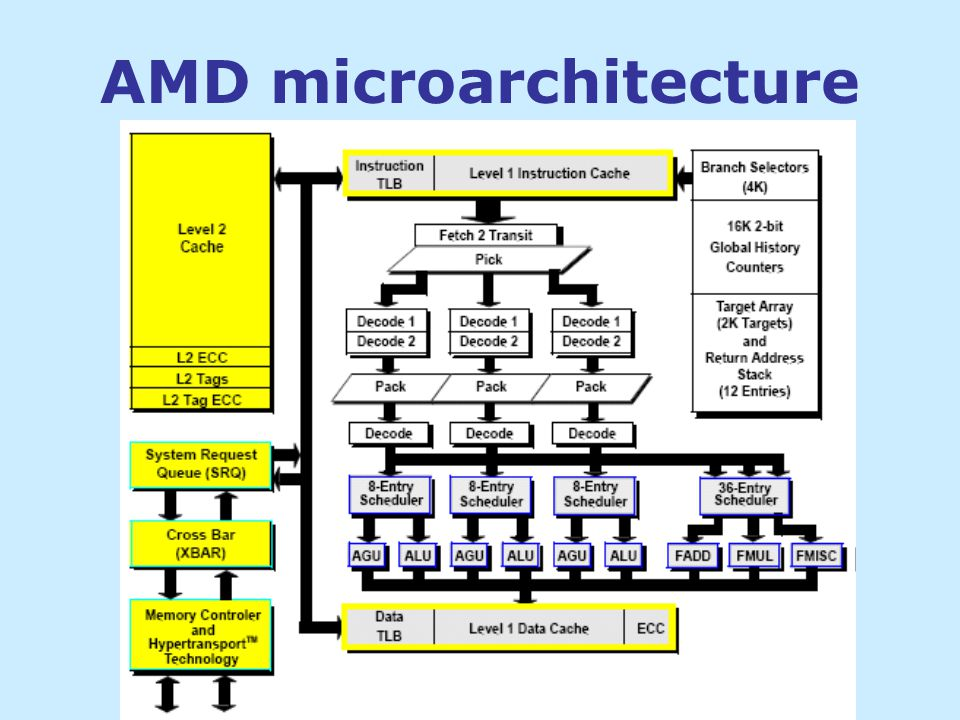 AMD microarchitecture