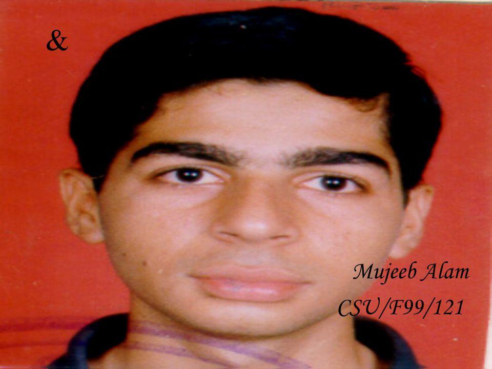 Muhammad Zohair Imtiaz. CSU/F99/113 By: -