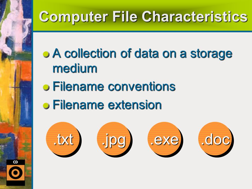 Computer File Characteristics A collection of data on a storage medium Filename conventions Filename extension.txt.txt.jpg.jpg.exe.exe.doc.doc