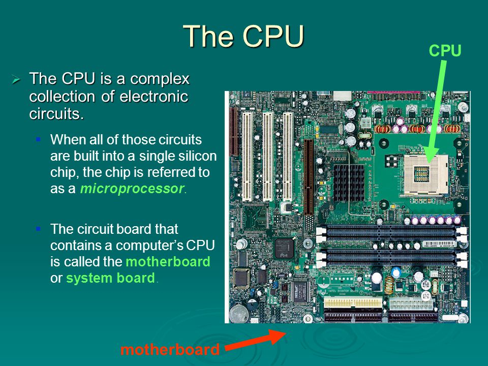 CPU Speed  A computer's speed is determined in part by the speed of its internal clock The clock is a timing device that produces electrical pulses to synchronize the computer's operations.
