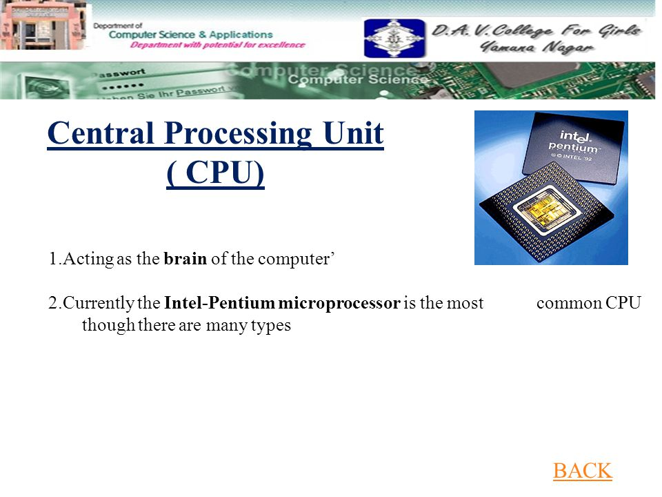 1.Acting as the brain of the computer' 2.Currently the Intel-Pentium microprocessor is the most common CPU though there are many types Central Processing Unit ( CPU) BACK