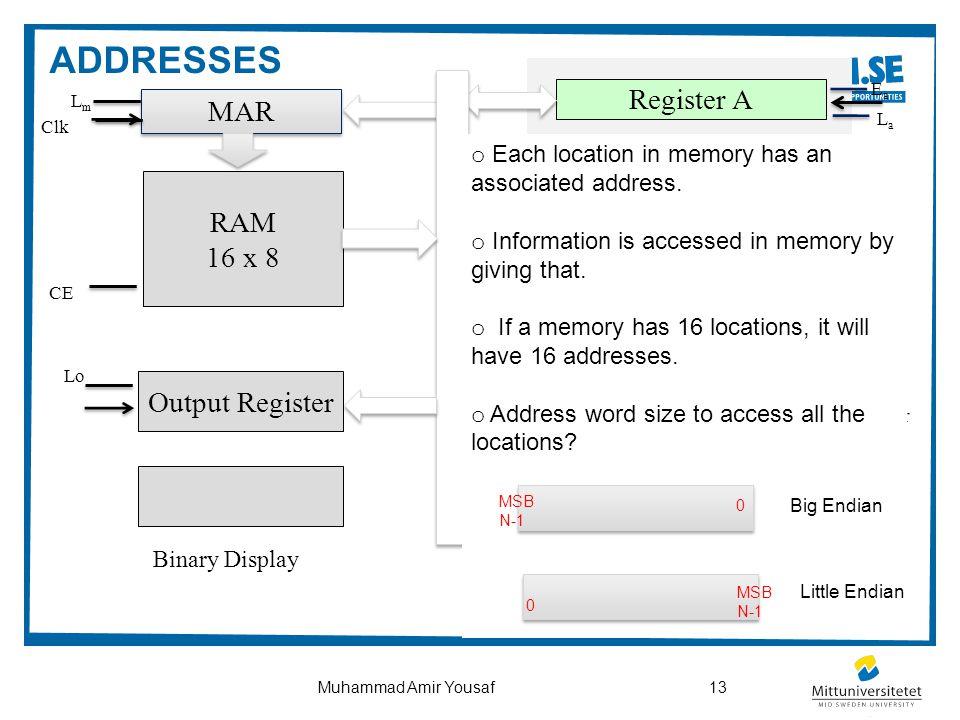 13Muhammad Amir Yousaf CPU RAM 16 x 8 Output Register ALU Controller MAR Register B Register A Binary Display PC IR Clk clr EpEp CpCp LmLm Clk CE clr