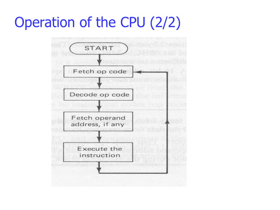 Operation of the CPU (2/2)