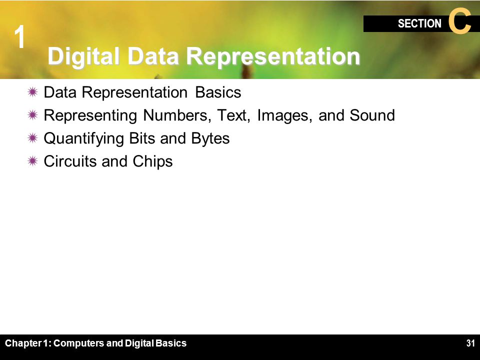 1 SECTION C Chapter 1: Computers and Digital Basics31 Digital Data Representation  Data Representation Basics  Representing Numbers, Text, Images, and Sound  Quantifying Bits and Bytes  Circuits and Chips