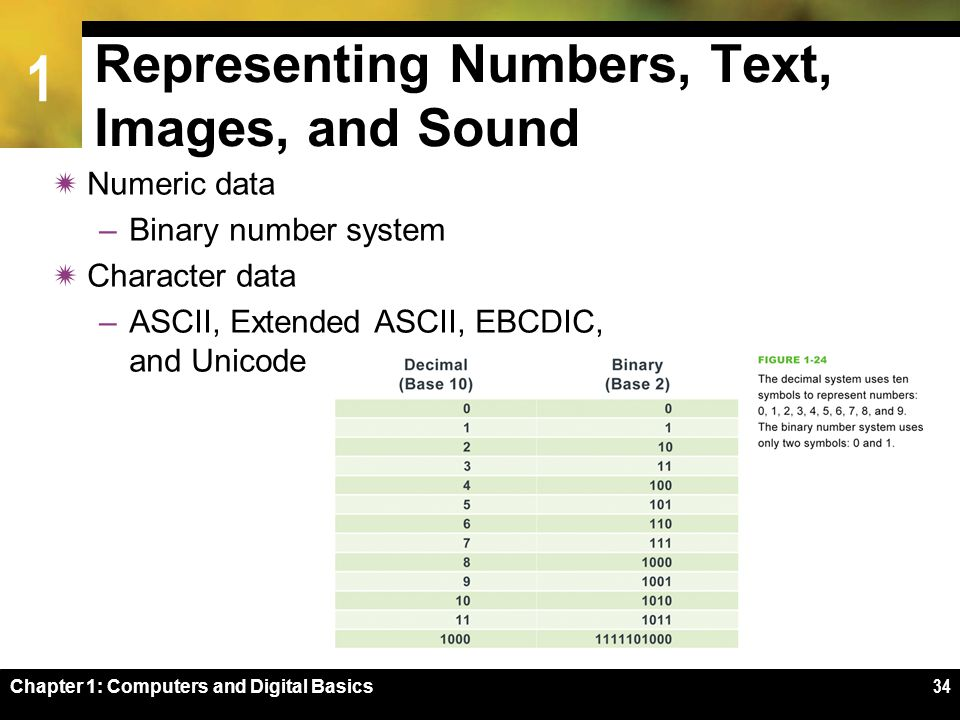 1 Chapter 1: Computers and Digital Basics34 Representing Numbers, Text, Images, and Sound  Numeric data –Binary number system  Character data –ASCII, Extended ASCII, EBCDIC, and Unicode
