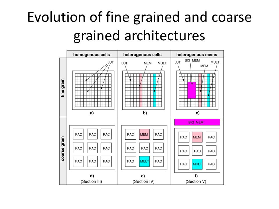 Evolution of fine grained and coarse grained architectures
