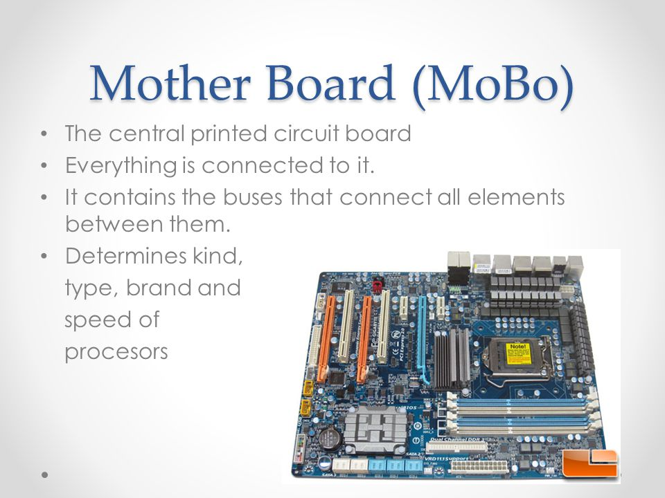 Mother Board (MoBo) The central printed circuit board Everything is connected to it.
