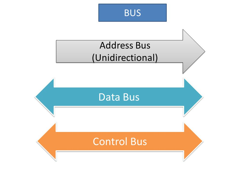 BUS Address Bus (Unidirectional) Address Bus (Unidirectional) Control Bus Data Bus