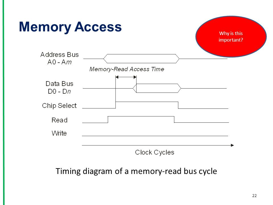 Memory Access 22 Timing diagram of a memory-read bus cycle Why is this important?