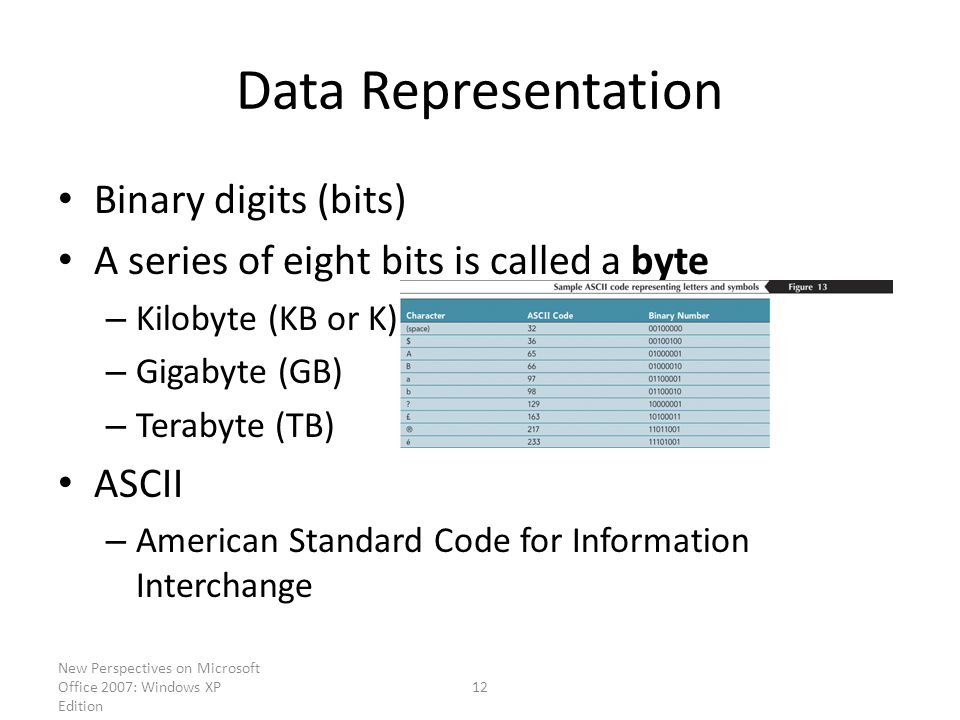 New Perspectives on Microsoft Office 2007: Windows XP Edition 12 Data Representation Binary digits (bits) A series of eight bits is called a byte – Kilobyte (KB or K) – Gigabyte (GB) – Terabyte (TB) ASCII – American Standard Code for Information Interchange