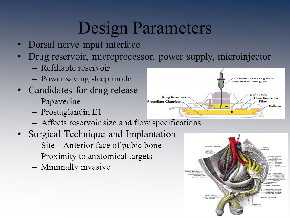 Design Parameters Dorsal nerve input interface Drug reservoir, microprocessor, power supply, microinjector – Refillable reservoir – Power saving sleep mode Candidates for drug release – Papaverine – Prostaglandin E1 – Affects reservoir size and flow specifications Surgical Technique and Implantation – Site – Anterior face of pubic bone – Proximity to anatomical targets – Minimally invasive