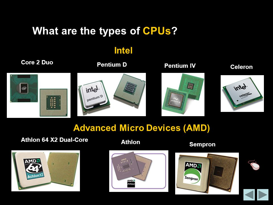 What are the types of CPUs.