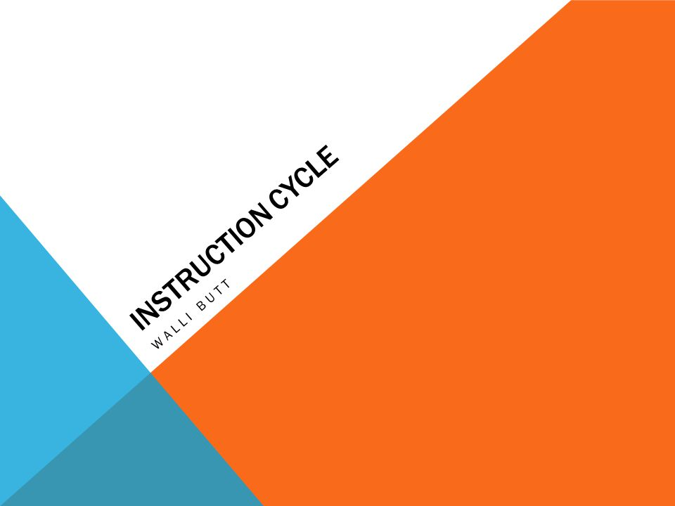INSTRUCTION CYCLE WALLI BUTT