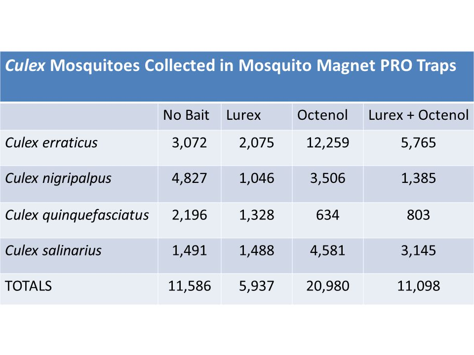 Culex Mosquitoes Collected in Mosquito Magnet PRO Traps No BaitLurexOctenolLurex + Octenol Culex erraticus3,0722,07512,2595,765 Culex nigripalpus4,8271,0463,5061,385 Culex quinquefasciatus2,1961,328634803 Culex salinarius1,4911,4884,5813,145 TOTALS11,5865,93720,98011,098