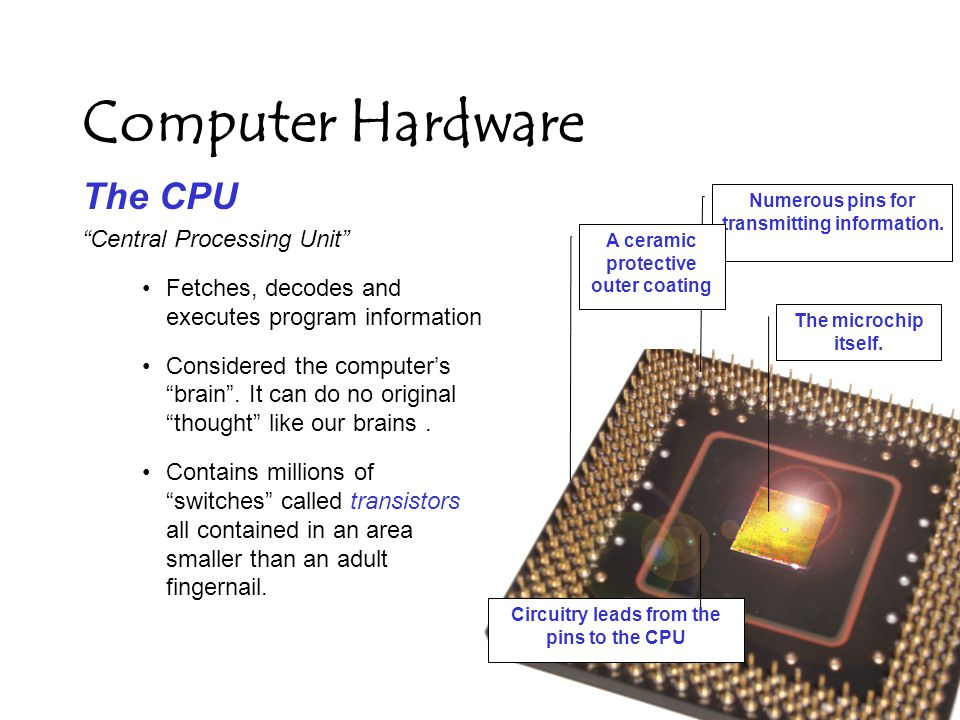 Computer Hardware The CPU Central Processing Unit Fetches, decodes and executes program information Considered the computer's brain .