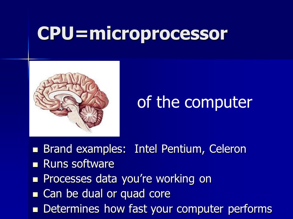 CPU=microprocessor Brand examples: Intel Pentium, Celeron Brand examples: Intel Pentium, Celeron Runs software Runs software Processes data you're working on Processes data you're working on Can be dual or quad core Can be dual or quad core Determines how fast your computer performs Determines how fast your computer performs of the computer