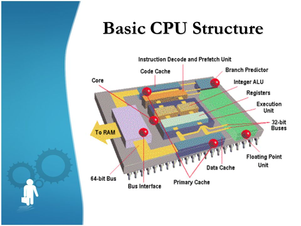 Basic CPU Structure