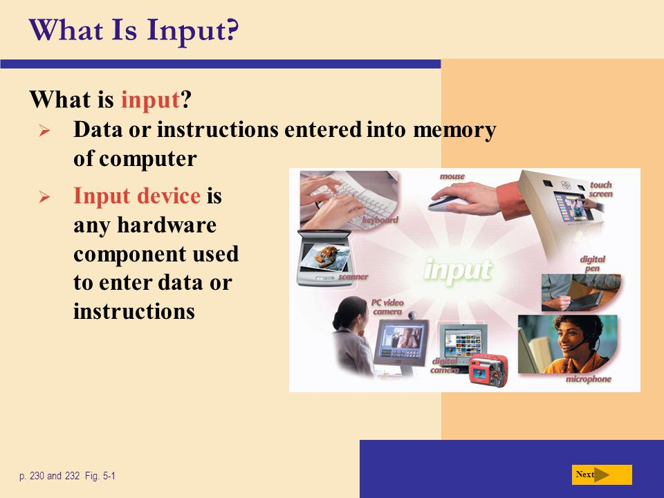 What Is Input. What is input. p. 230 and 232 Fig.