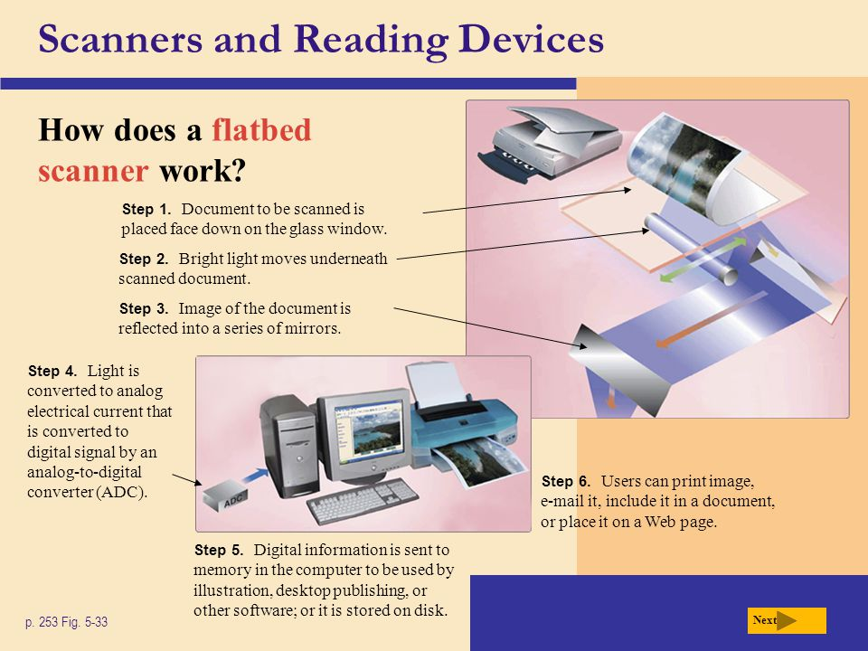 Scanners and Reading Devices How does a flatbed scanner work.