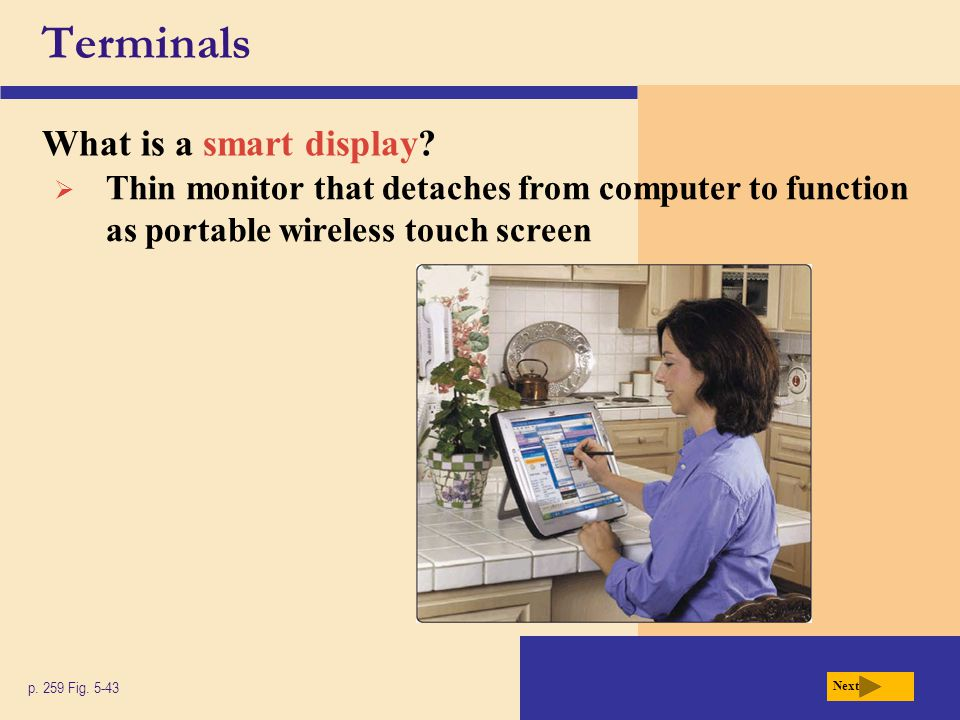 Terminals What is a smart display. p. 259 Fig.