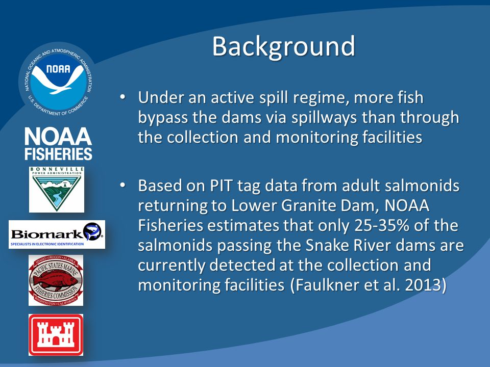 Background Under an active spill regime, more fish bypass the dams via spillways than through the collection and monitoring facilities Under an active spill regime, more fish bypass the dams via spillways than through the collection and monitoring facilities Based on PIT tag data from adult salmonids returning to Lower Granite Dam, NOAA Fisheries estimates that only 25-35% of the salmonids passing the Snake River dams are currently detected at the collection and monitoring facilities (Faulkner et al.