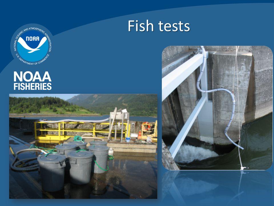 Fish tests