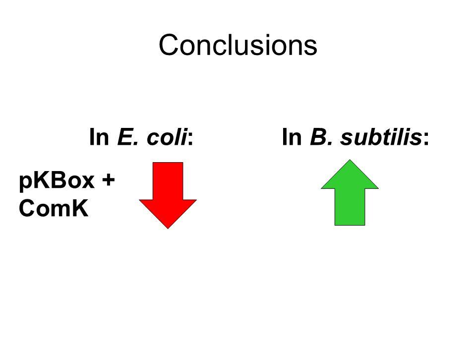 Conclusions In E. coli:In B. subtilis: pKBox + ComK