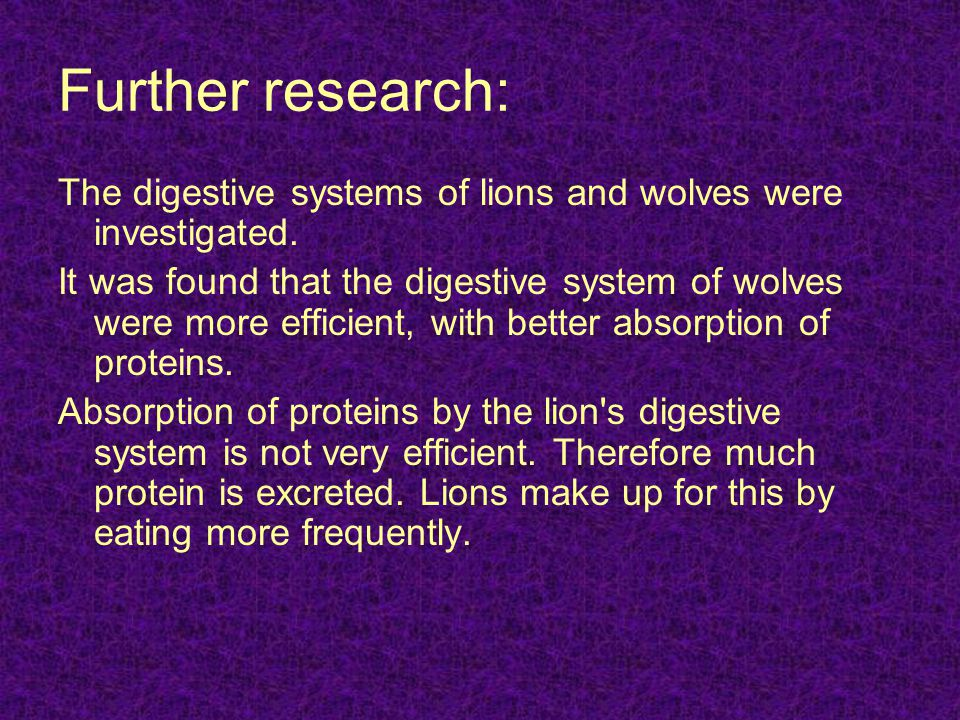 Further research: The digestive systems of lions and wolves were investigated. It was found that the digestive system of wolves were more efficient, w