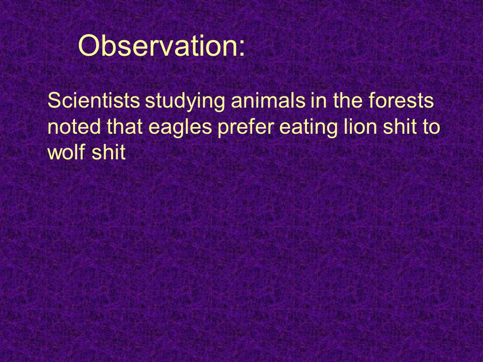 Observation: Scientists studying animals in the forests noted that eagles prefer eating lion shit to wolf shit