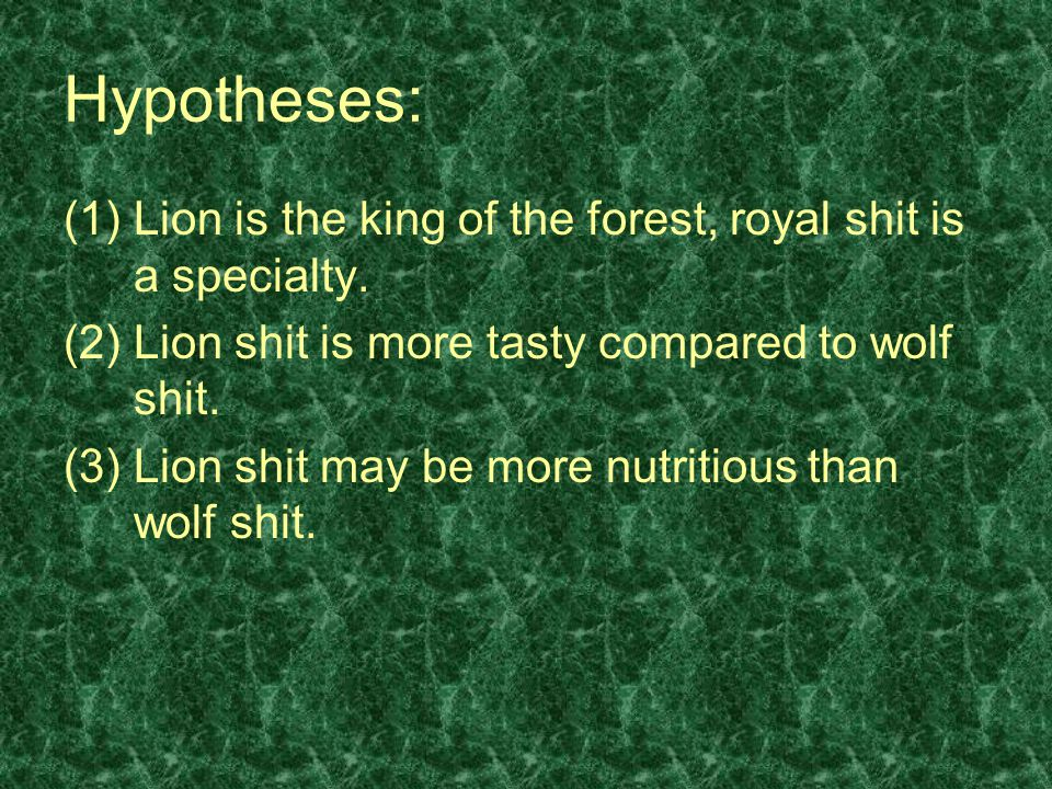 Hypotheses: (1)Lion is the king of the forest, royal shit is a specialty. (2) Lion shit is more tasty compared to wolf shit. (3) Lion shit may be more
