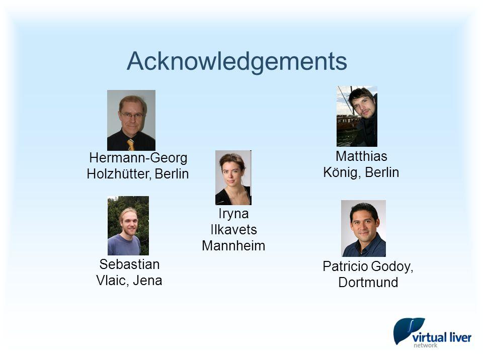 Acknowledgements Iryna Ilkavets Mannheim Hermann-Georg Holzhütter, Berlin Patricio Godoy, Dortmund Sebastian Vlaic, Jena Matthias König, Berlin