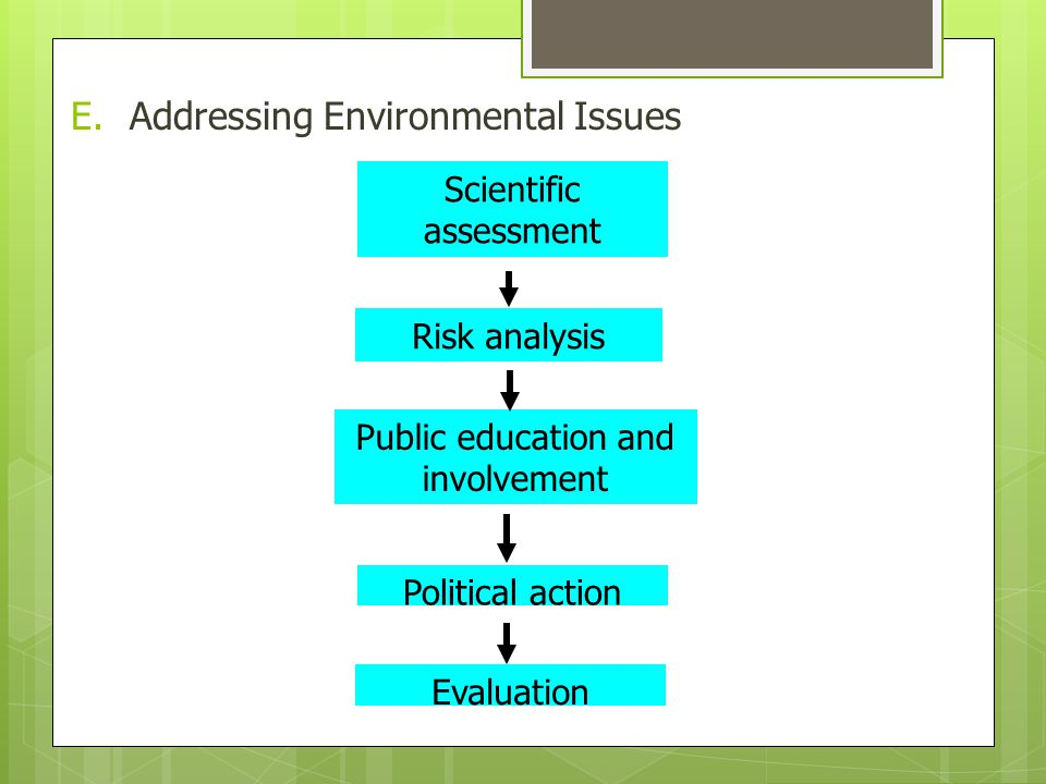 E.Addressing Environmental Issues Scientific assessment Risk analysis Public education and involvement Political action Evaluation