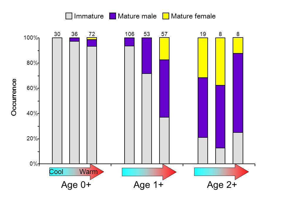 ImmatureMature maleMature female 0% 20% 40% 60% 80% 100% Age 0+ Occurrence UB 30 BR 36 BD 72 Age 1+ UB 106 BR 53 BD 57 Age 2+ UB 19 BR 8 BD 8 Cool Warm