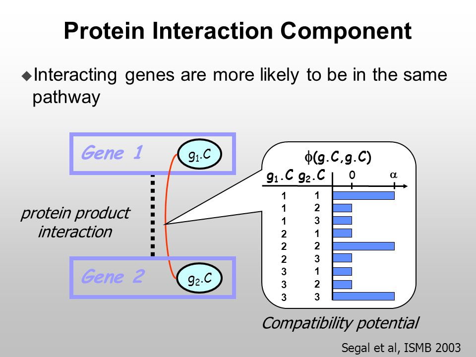 Protein Interaction Component Gene 1 g 1.C g 2.C Gene 2 protein product interaction  Interacting genes are more likely to be in the same pathway Comp