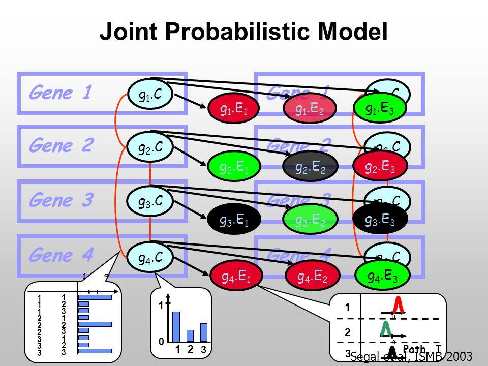 Joint Probabilistic Model Gene 1 g 1.C g 2.C g 3.C g 4.C Gene 2 Gene 3 Gene 4 Gene 1 g 1.C g 2.C g 3.C g 4.C Gene 2 Gene 3 Gene 4 g 1.E 1 g 1.E 2 g 1.E 3 g 2.E 1 g 2.E 2 g 2.E 3 g 3.E 1 g 3.E 2 g 3.E 3 g 4.E 1 g 4.E 2 g 4.E 3  1 123123123123123123 111222333111222333 1 2 3 0 1 1 2 3 0 0 Path.