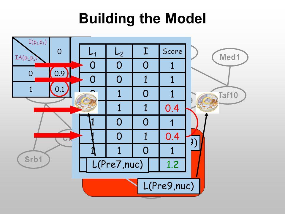 Pre7Pre9 Tbf1 Cdk8 Med17 Cln5 Taf10 Pup3 Pre5 Med5 Srb1 Med1 Taf1 Mcm1 Building the Model IA(Pre7,Pre9) I (Pre7,Pre9) I(p 1,p 2 ) IA(p 1,p 2 ) 01 00.90.3 10.10.7 I(Pre7,Pre9) IA(Pre7,Pre9) I (Pre7,Pre9) L(Pre9,nuc) L(Pre7,nuc) 111 011 101 001 110 010 100 000 Score IL2L2 L1L1 1.2 1 1 1 1 1 0.4 L(Pre9,nuc) L(Pre7,nuc)