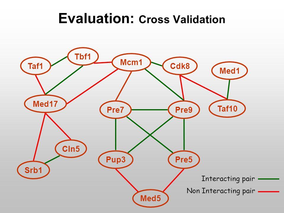 Pre7Pre9 Tbf1 Cdk8 Med17 Cln5 Taf10 Pup3Pre5 Med5 Srb1 Med1 Taf1 Mcm1 Evaluation: Cross Validation Interacting pair Non Interacting pair