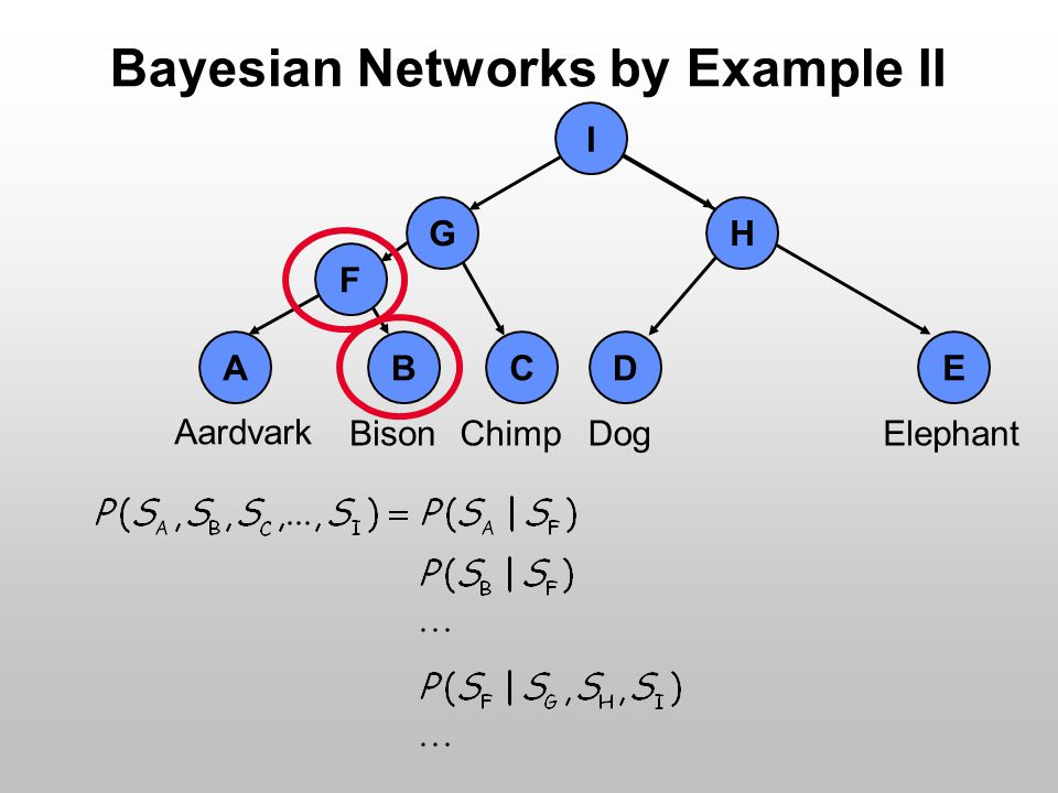 Bayesian Networks by Example II Aardvark BisonChimpDogElephant I H E D A B C F G