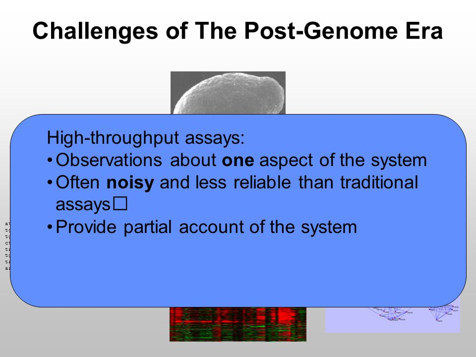 Bayesian Networks by Example Extending this argument, we can derive a functional form for general pedigrees Descendants Homer Bart Marge Lisa Maggie Probability of genetic transmission within family Probability of random genotype in population