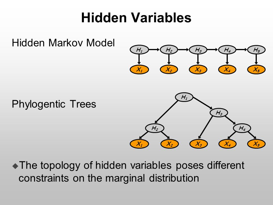 Hidden Variables Hidden Markov Model Phylogentic Trees  The topology of hidden variables poses different constraints on the marginal distribution H1H