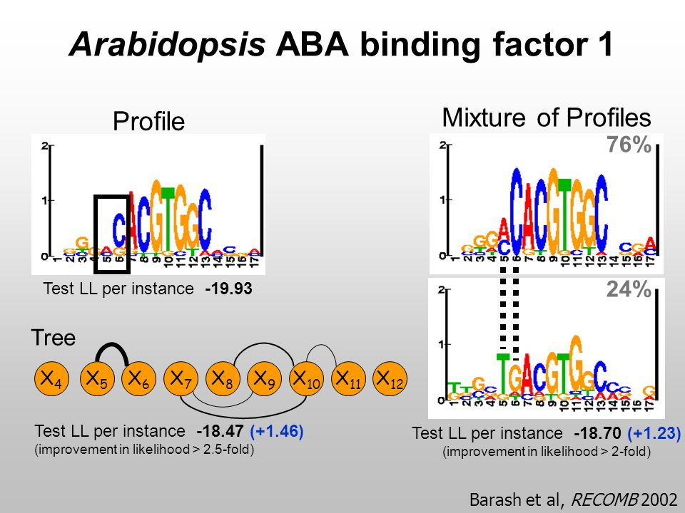 Arabidopsis ABA binding factor 1 Profile Test LL per instance -19.93 Mixture of Profiles 76% 24% Test LL per instance -18.70 (+1.23) (improvement in l