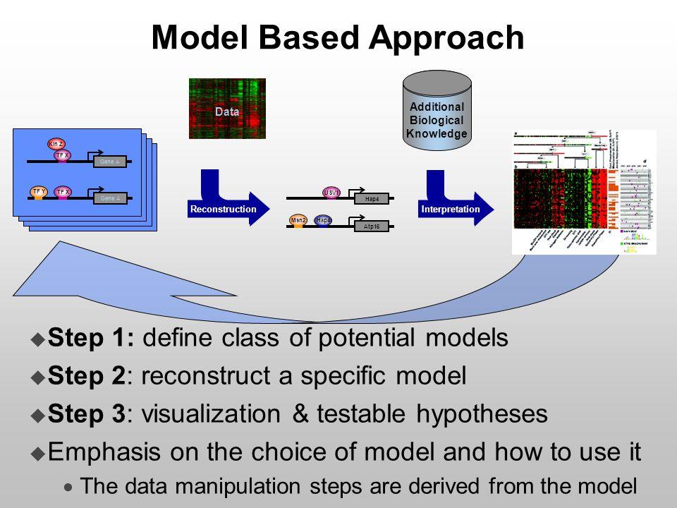 Model Based Approach Representation – defining the class of models  What entities to involve  Model granularity  Identifiably Kin Z TF X Gene A TF Y TF X Gene A USV1 Hap4 Msn2 Hap4 Atp16 Reconstruction Interpretation Additional Biological Knowledge Data Kin Z TF X Gene A TF Y TF X Gene A Kin Z TF X Gene A TF Y TF X Gene A Kin Z TF X Gene A TF Y TF X Gene A