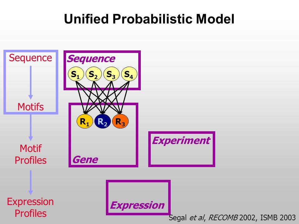Unified Probabilistic Model Experiment Gene Expression Sequence S4S4 S1S1 S2S2 S3S3 R2R2 R1R1 R3R3 Motifs Motif Profiles Expression Profiles Segal et