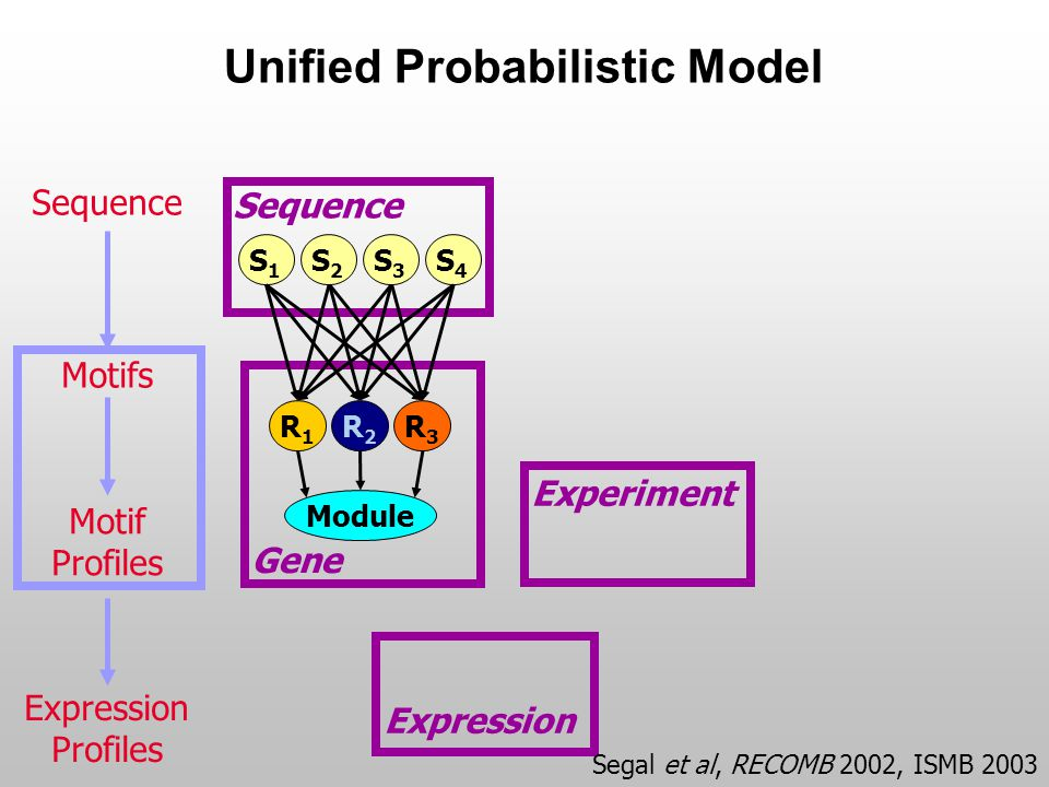 Experiment Expression Unified Probabilistic Model Gene Sequence S4S4 S1S1 S2S2 S3S3 R1R1 R2R2 R3R3 Module Sequence Motifs Motif Profiles Expression Pr