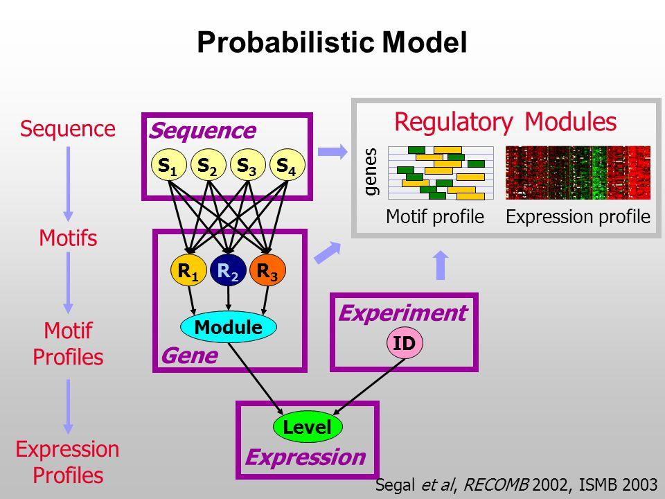 Probabilistic Model Experiment Gene Expression Module Sequence S4S4 S1S1 S2S2 S3S3 R1R1 R2R2 R3R3 ID Level Sequence Motifs Motif Profiles Expression Profiles genes Motif profile Expression profile Regulatory Modules Segal et al, RECOMB 2002, ISMB 2003